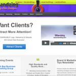 BrandZing Website image